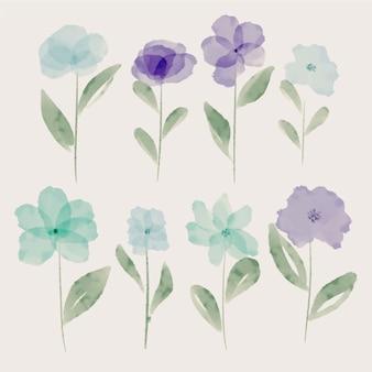 Conjunto de bonitas flores pintadas a mano