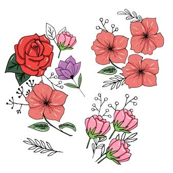 Conjunto de botánica