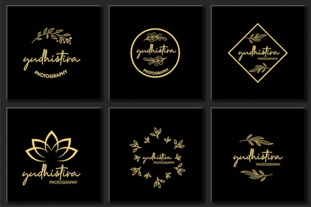 Conjunto botánico marco elemento diseño vectorial