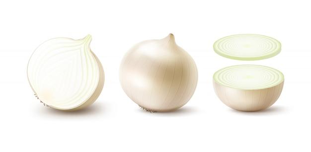 Conjunto de bulbos frescos enteros y en rodajas de cebolla blanca de cerca aislado sobre fondo blanco