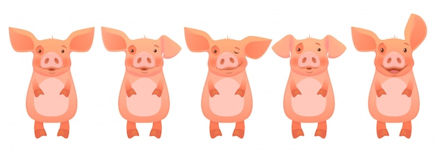 Conjunto cabeza de cerdo rosa
