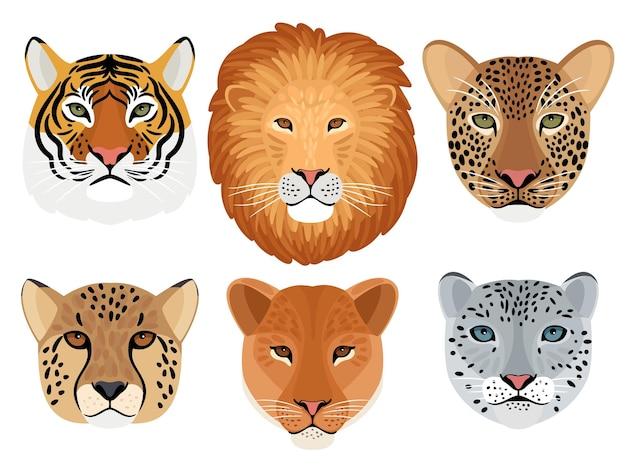 Conjunto de cabeza de gato salvaje. trofeo de caza, león y tigre, leopardo y leopardo de las nieves, cara frontal de guepardo de gatos monteses, ilustración vectorial de cabezas de bestias agresivas aisladas sobre fondo blanco