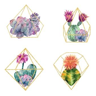 Conjunto de cactus en un marco dorado.