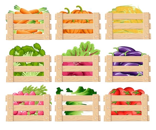 Conjunto de caja de madera para guardar verduras y frutas vista frontal de cajas de madera con alimentos frescos con ilustración sobre fondo blanco.