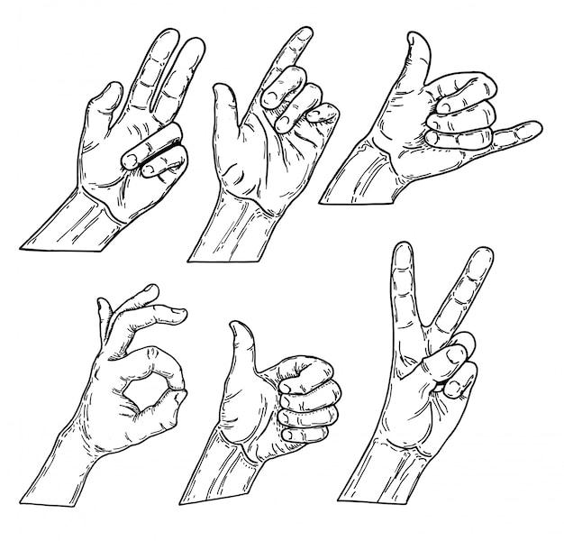 Conjunto de caminos que dibujan gestos de mano, ilustración del bosquejo. dibujado a mano dibujo vectorial colección de gestos con las manos
