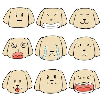 Conjunto de cara de perro