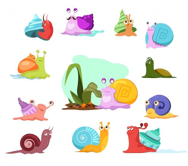 Conjunto de caracoles multicolor