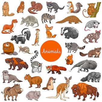 Conjunto de caracteres animales mamíferos salvajes