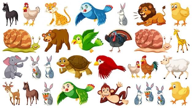 Conjunto de caracteres animales.