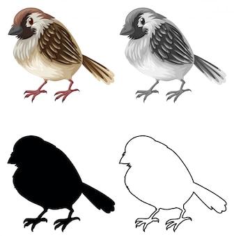 Conjunto de caracteres de gorrión