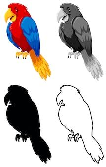Conjunto de caracteres de loro.