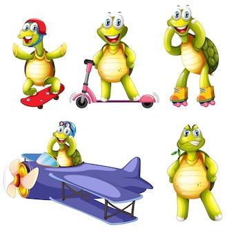 Conjunto de caracteres de tortuga.