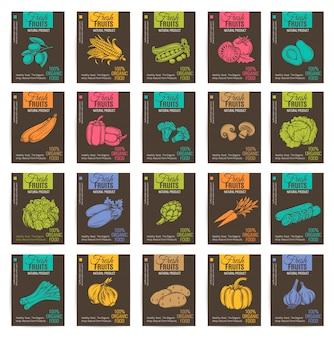 Conjunto de carteles de vegetales dibujados a mano.