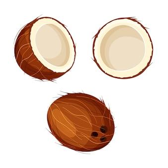Conjunto de coco abierto y cerrado aislado. entero y medio coco.