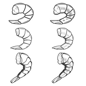 Conjunto de colas de camarones sobre fondo blanco. mariscos. elemento para logotipo, emblema, póster, menú.