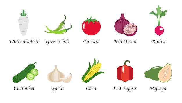 Conjunto de colección aislada de especias de alimentos vegetales de salud de naturaleza orgánica