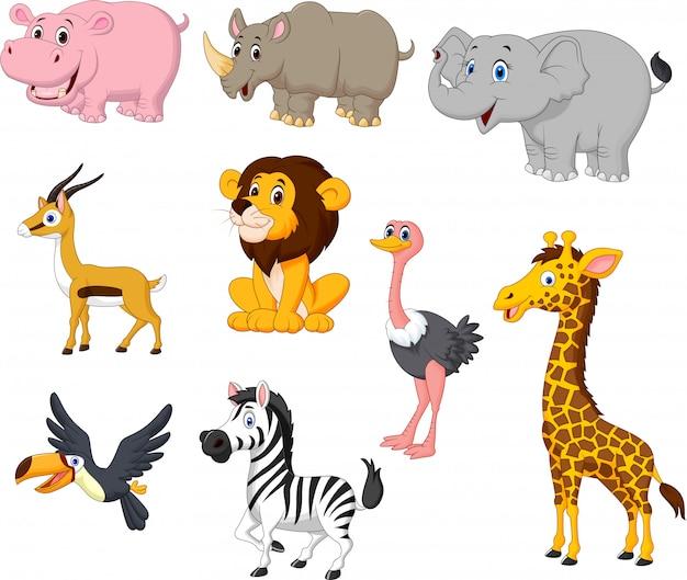Conjunto de colección de animales salvajes de dibujos animados