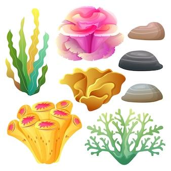 Conjunto de colección de arrecifes de coral