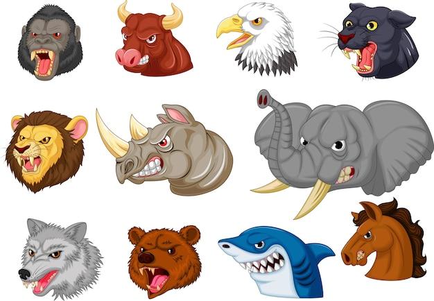 Conjunto de colección de cabeza de animales enojados de dibujos animados