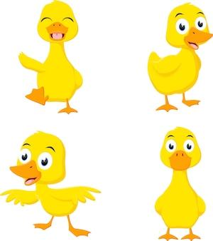 Conjunto de colección de dibujos animados de pato feliz