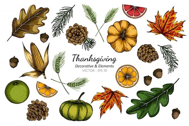 Conjunto de colección de flores decorativas de acción de gracias y hojas de dibujo ilustración.