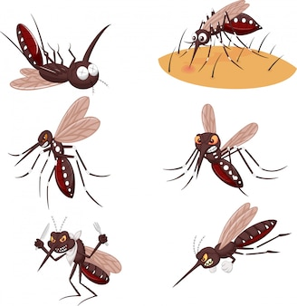 Conjunto de colección de mosquitos de dibujos animados