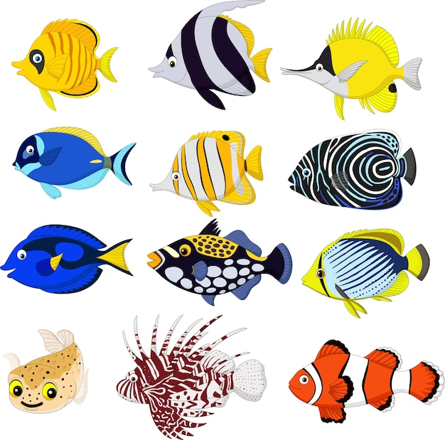 Conjunto de colección de peces tropicales de dibujos animados