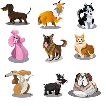 Conjunto de colección de perros de divertidos dibujos animados