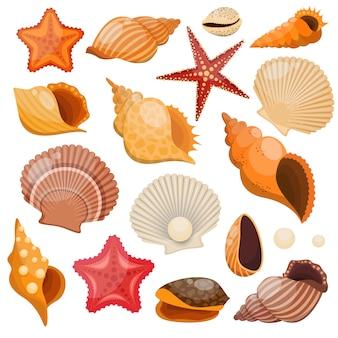Conjunto de colores aislados de conchas y estrellas de mar con el fondo marino