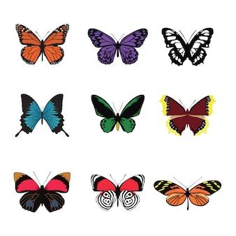 Conjunto de colores de mariposas