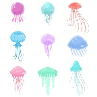 Conjunto de coloridas criaturas marinas medusas mar y océano