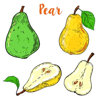 Conjunto de coloridas ilustraciones de pera sobre fondo blanco. ilustración