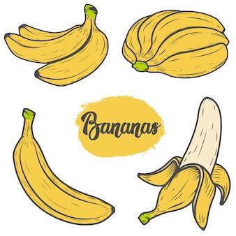 Conjunto de coloridas ilustraciones de plátano dibujado a mano. elementos para logotipo, etiqueta, emblema, signo, menú. ilustración