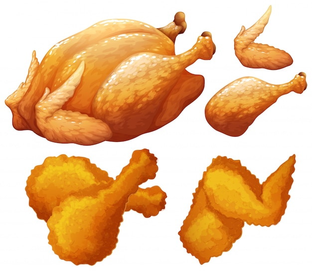 Conjunto de comida hecha por pollo.