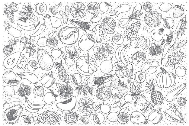 Conjunto de comida vegana dibujada a mano