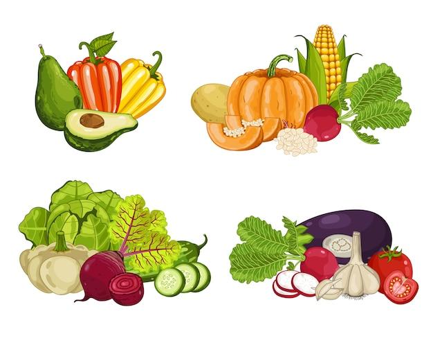 Conjunto de composición aislada de vegetales orgánicos frescos