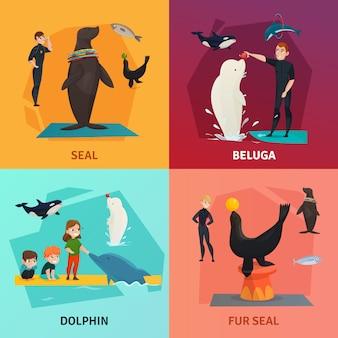 Conjunto de composición del espectáculo del delfinario