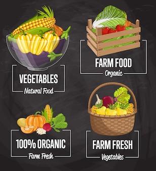 Conjunto de concepto de comida orgánica de granja