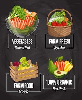 Conjunto de concepto de cosecha de granja orgánica