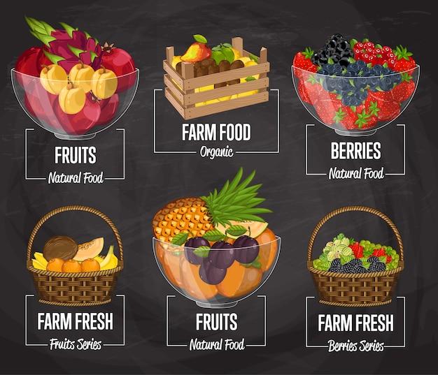 Conjunto de concepto de fruta de granja orgánica