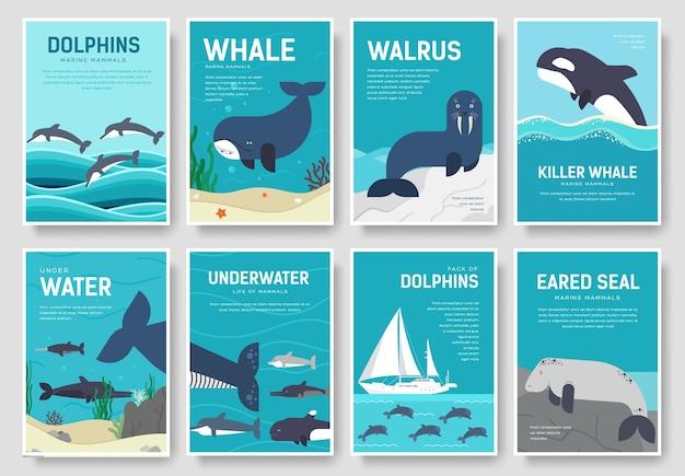 Conjunto de concepto de patrón de mamíferos marinos