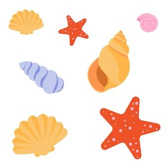 Conjunto de conchas de mar y estrellas de mar.