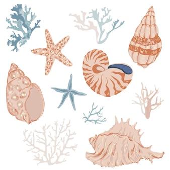 Conjunto de conchas marinas y corales bosquejados