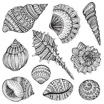 Conjunto de conchas marinas ornamentadas dibujadas a mano