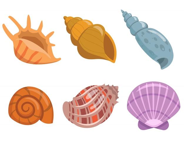 Conjunto de conchas submarinas. hermosos objetos en estilo de dibujos animados.