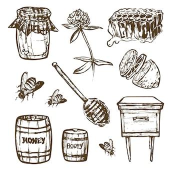 Conjunto con conjunto de elementos de miel. tarro de miel, cuchara, células de palo, trébol, colmena, abeja, barril de limón. ilustración