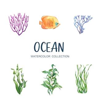 Conjunto de coral acuarela aislado