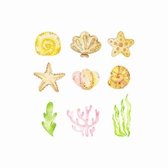 Conjunto de corales acuarela