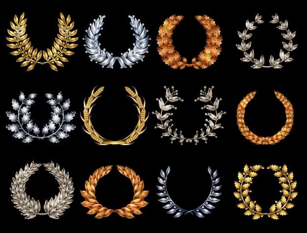 Conjunto de coronas elegantes premium