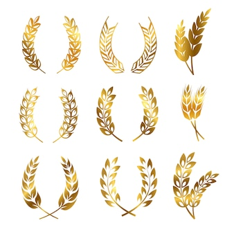 Conjunto de coronas de espigas de trigo centeno dorado, adorno de logotipo